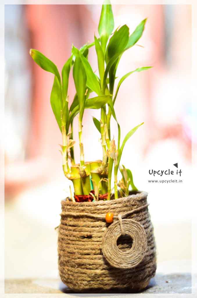 Upcycle Planter